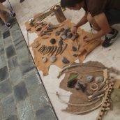Arqueocumples Alharuín de la Torre