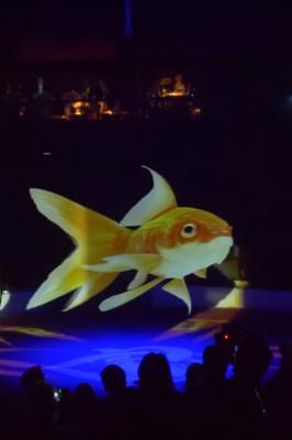 Holograma Pez en un Circo sin animales