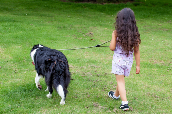 Niña paseando a un perro