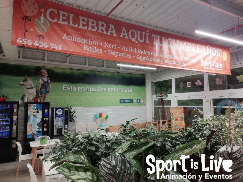 Verdecora para fiestas de cumpleaños en Málaga