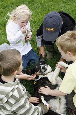 Niños jugando con un perro